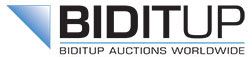 Biditup Auctions Worldwide, An Industrial Assets Company company logo